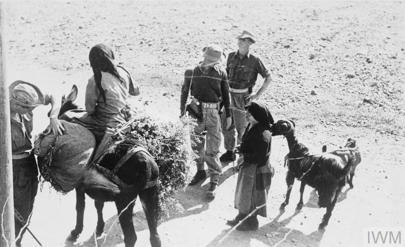 Greek Cypriots detained - British soldiers at a checkpoint conducting a search.